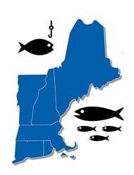 fishing new england